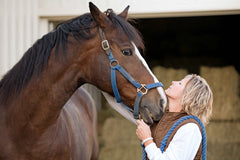a horse that has been treated with Colikare for colic in horses and equestrian colic treatment