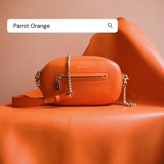All About Colours: Parrot Orange