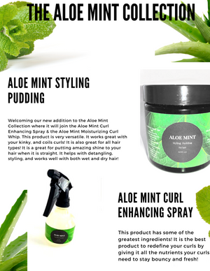 Aloe Mint - 8oz Curl Enhancing Spray