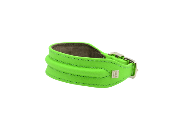 D&H Green Horizon Hound Collar