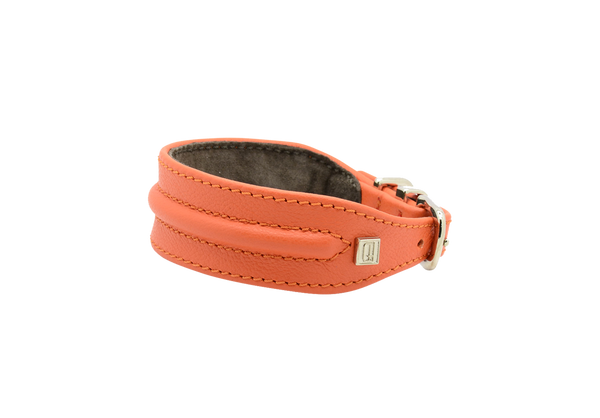D&H Orange Horizon Hound Collar