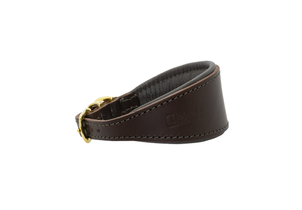 D&H Brown with Gold Hound Collar