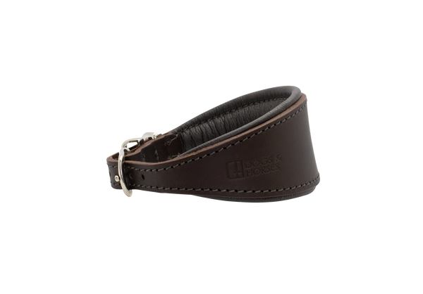 D&H Brown with Silver Hound Collar