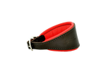 D&H Brown/Red Hound Collar