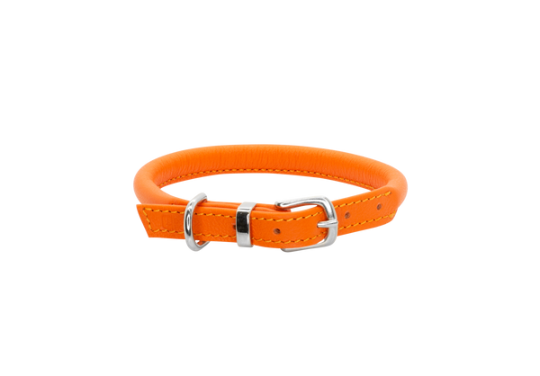 D&H Orange Rolled Leather Dog Collar