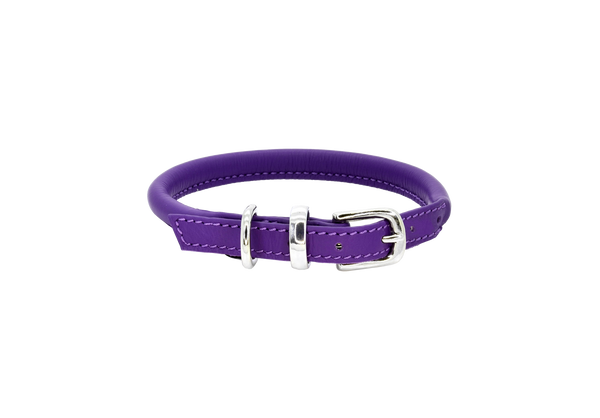 D&H Purple Rolled Leather Dog Collar