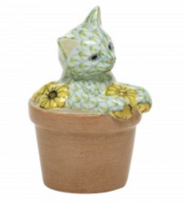 Flower Pot Kitty