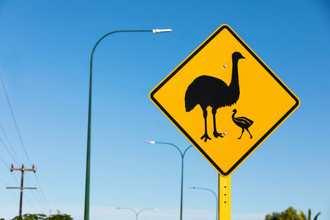 beware of emus in exmouth