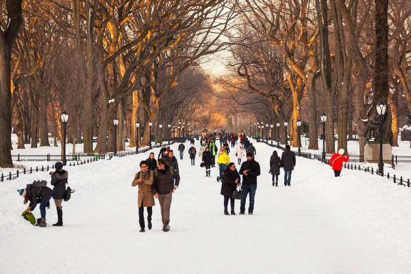 central park in winter how to keep warm blog by seahorse silks