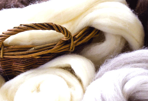 wool from shahtoosh antelope blog by seahorse silks