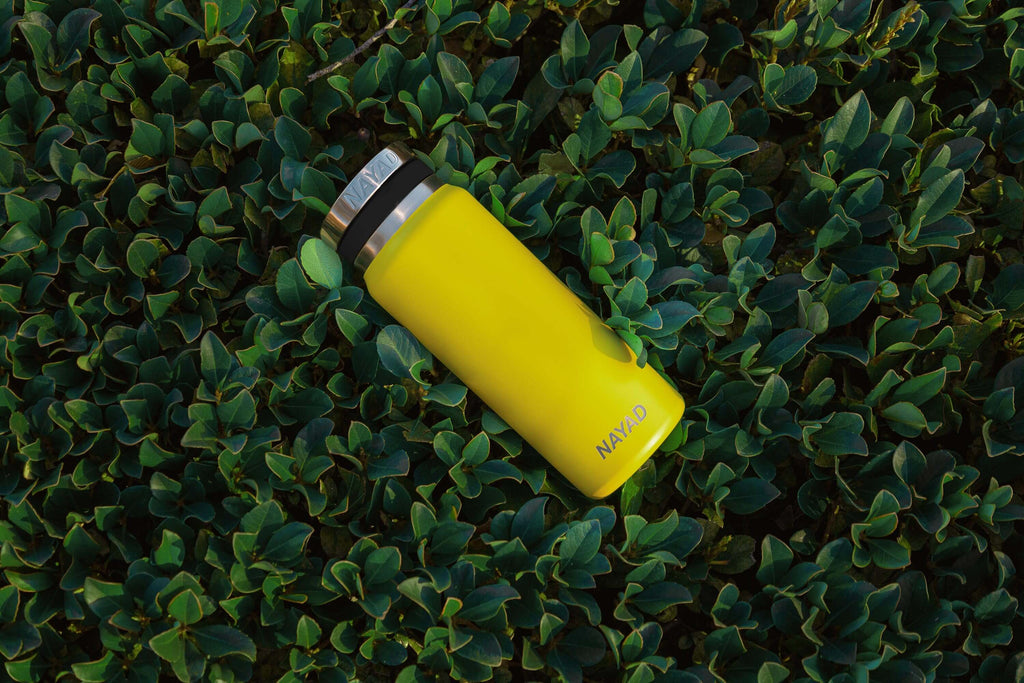 Introducing the Roamer Bottle