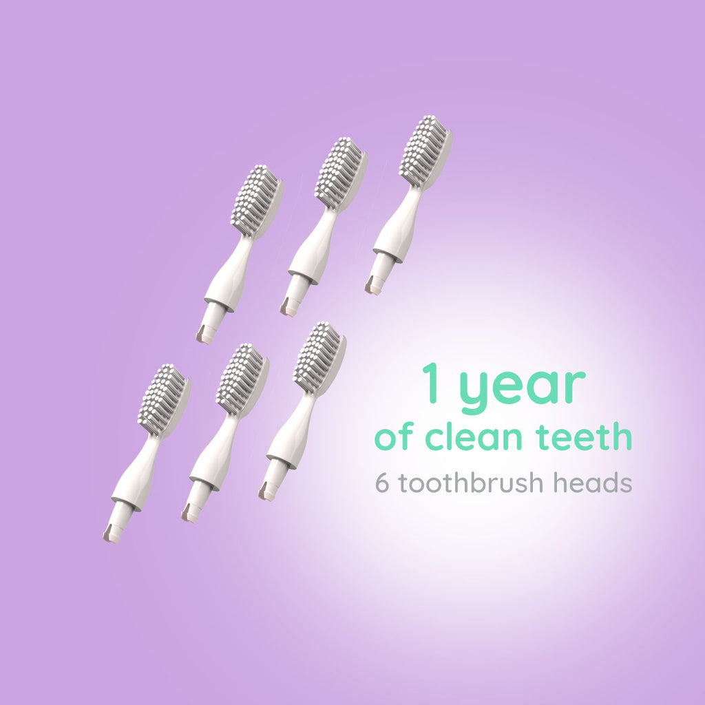 6 Replacement Toothbrush Heads