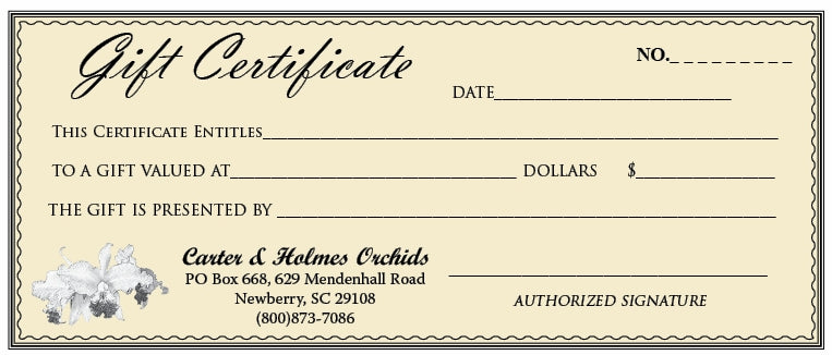Gift Certificate (Pick Amount)