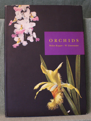 Orchids by Walter Kupper  (English translation)