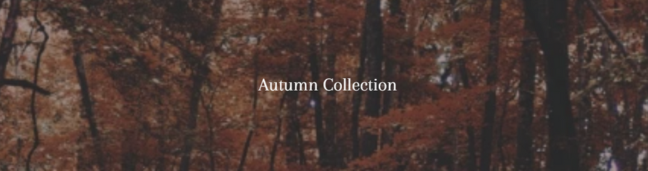 The Autumn Collection Is Here At Our Online Boutique!