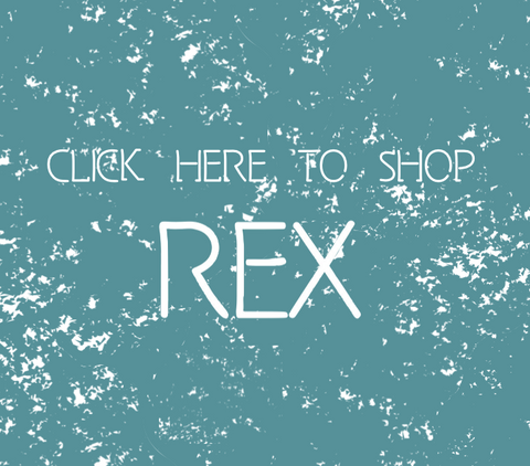 Check out REX's very own website!