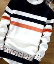 CO 2019 autumn sweater male teenagers Cultivate one's morality round neck sweater Thin striped sweater - Roshyshine
