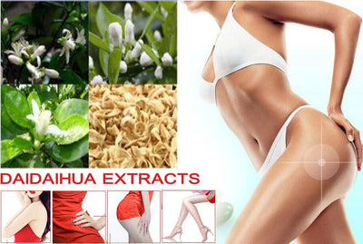 The best PRODUCT Tees DAIDAIHUA extracts herbal weight loss fat burning diet slimming TOPS original - Roshyshine