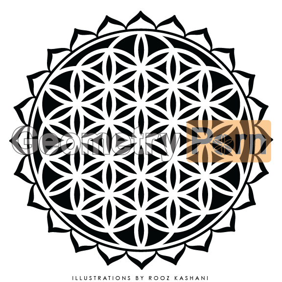 FLOWER OF LIFE MANDALA - Geometry Porn