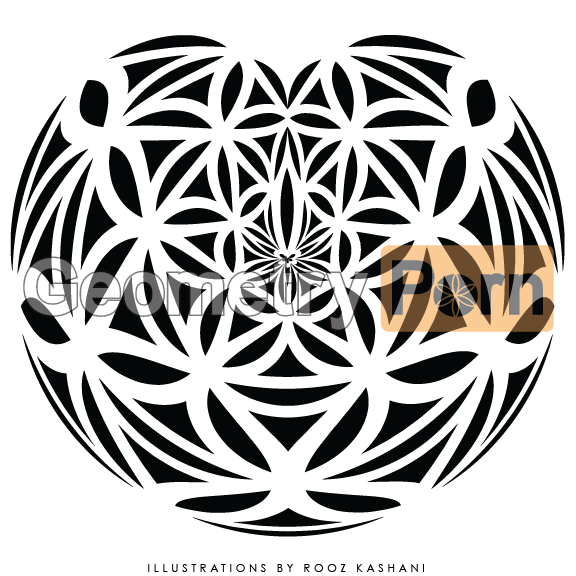 HEART OF LIFE - Geometry Porn