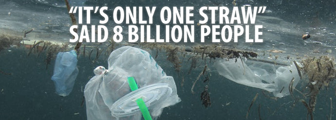 Why plastic is such a problem?