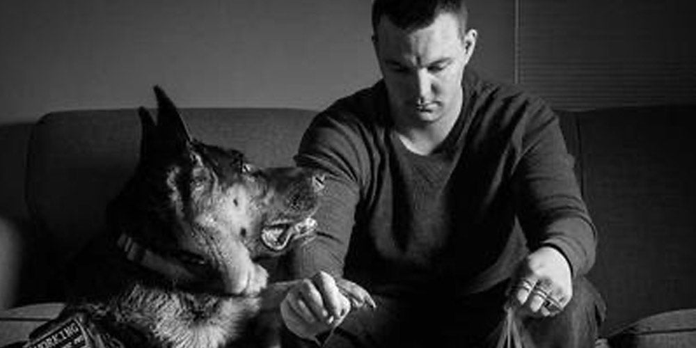 A Marine Veteran Shows the Importance of Service Dogs in the Lives of the Disabled