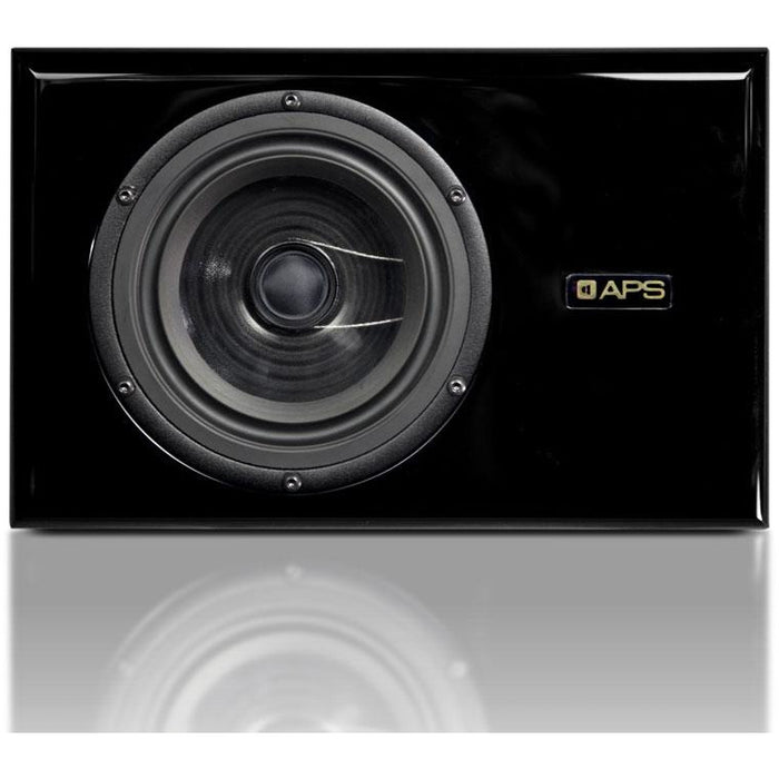 "APS COAX - Dual-Concentric Two-Way Speaker 10.2"" 280W (Pair) - Black"