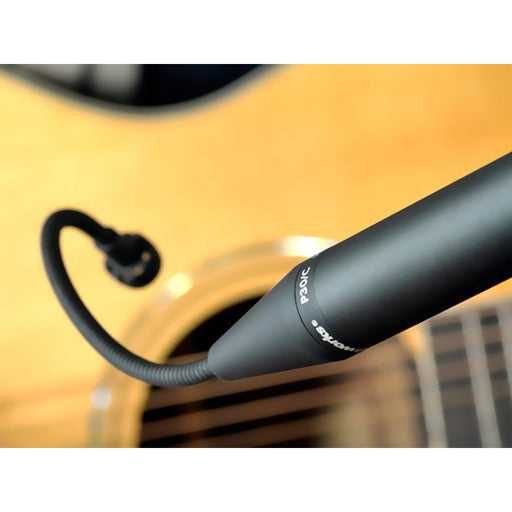 Earthworks P30/Cmp-B - Matched Pair of Gooseneck Cardioid Microphones for Instruments - Black