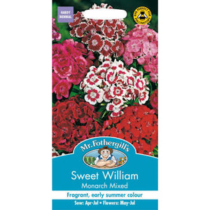 Sweet William Monarch Mixed Seeds- By Mr Fothergills