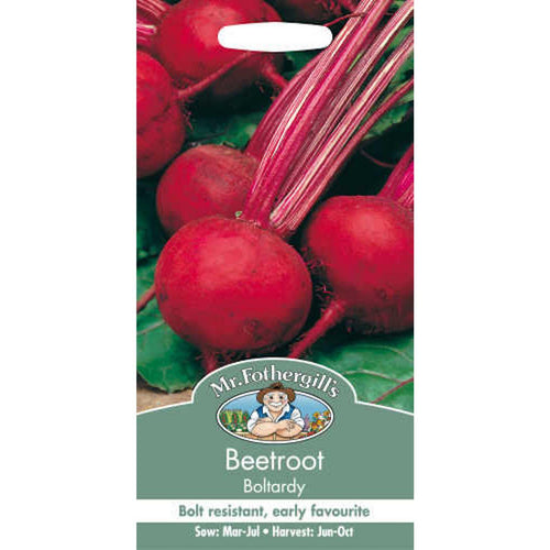 Beetroot Boltardy (Beta Vulgaris) Seeds- By Mr Fothergills