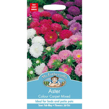 Load image into Gallery viewer, Aster Colour Carpet Mixed Seeds- By Mr Fothergills