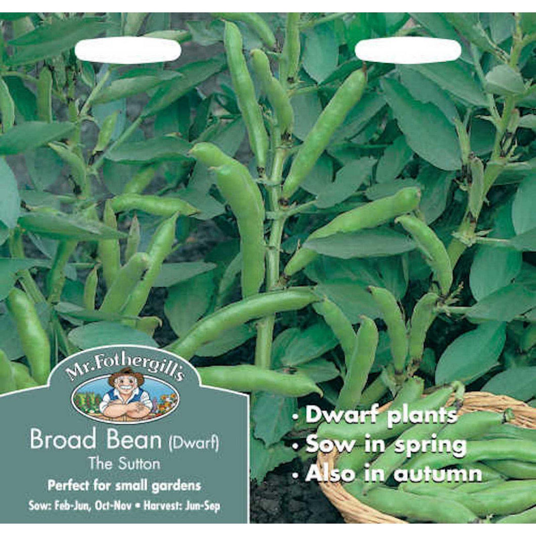Broad Bean The Sutton Seeds- By Mr Fothergills