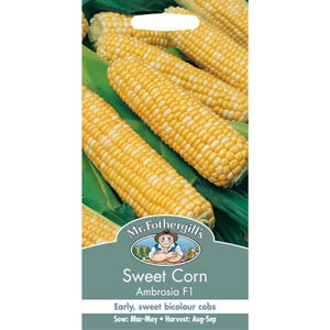 Sweetcorn Ambrosia F1 Seeds- By Mr Fothergills