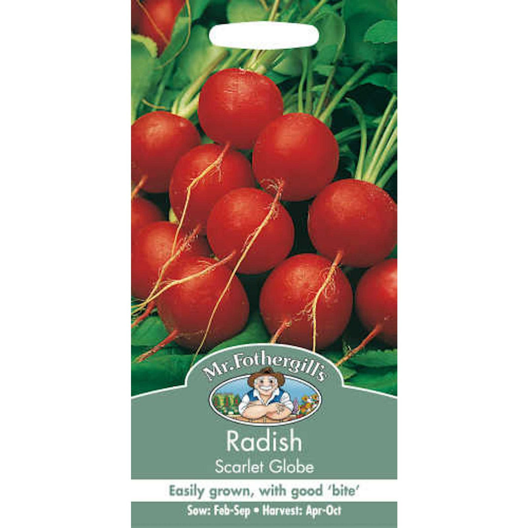 Radish Scarlet Globe Seeds- By Mr Fothergills
