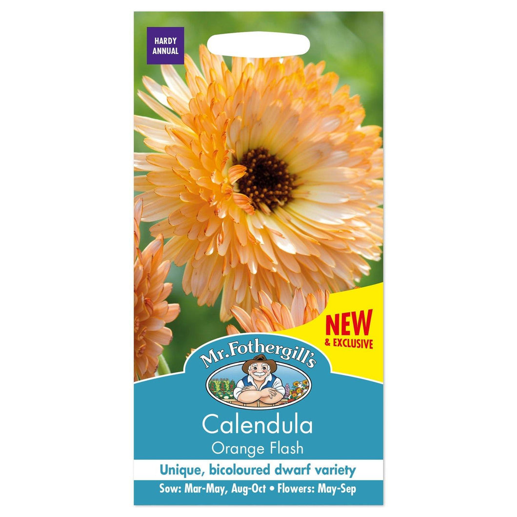 Calendula Orange Flash Seeds- By Mr Fothergills