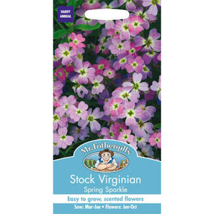 Stock Virginian Spring Sparkle Seeds- By Mr Fothergills