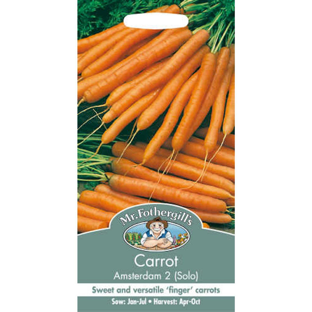 Carrot Amsterdam 2 Solo Seeds- By Mr fothergills - Bells Gardening