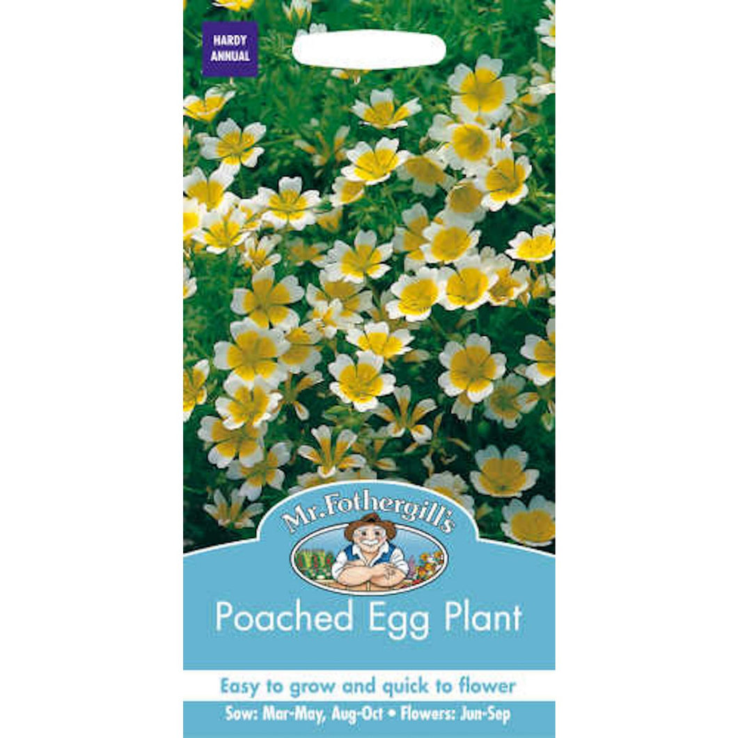 Poached Egg Plant Seeds- By Mr fothergills