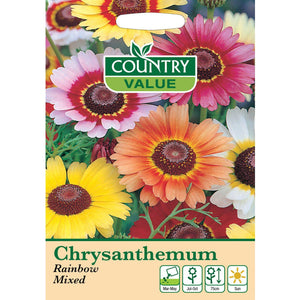 Chrysanthemum Rainbow Mixed Seeds- By Country Value - Bells Gardening