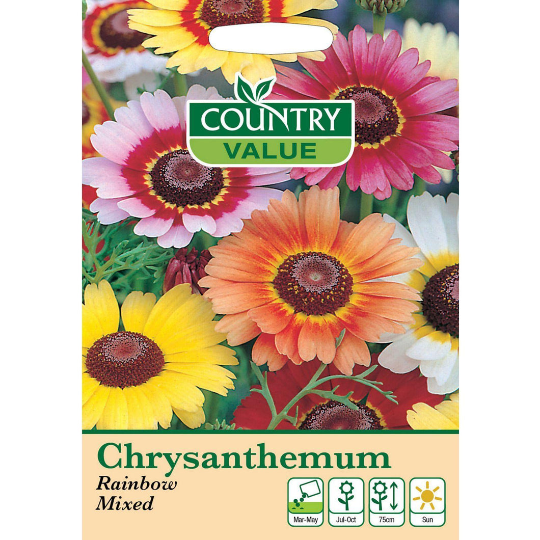 Chrysanthemum Rainbow Mixed Seeds- By Country Value