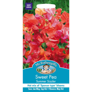 Sweet Pea Summer Sizzler Seeds- By Mr Fothergills