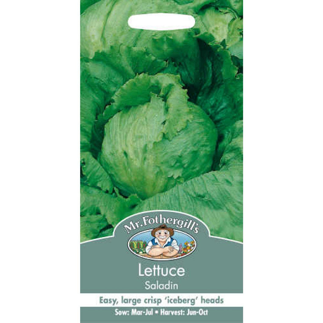 Lettuce Saladin Seeds- By Mr Fothergills - Bells Gardening