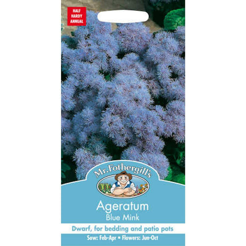 ageratum blue mink seed by Mr Fothergills- dwarf variety bedding