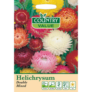 Helichrysum Double Mixed seeds- By Country Value - Bells Gardening