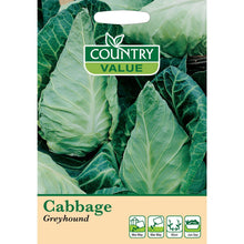 Load image into Gallery viewer, Cabbage Greyhound seeds - Bells Gardening