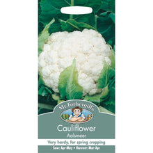 Load image into Gallery viewer, Cauliflower Aalsmeer Seeds- By Mr Fothergills