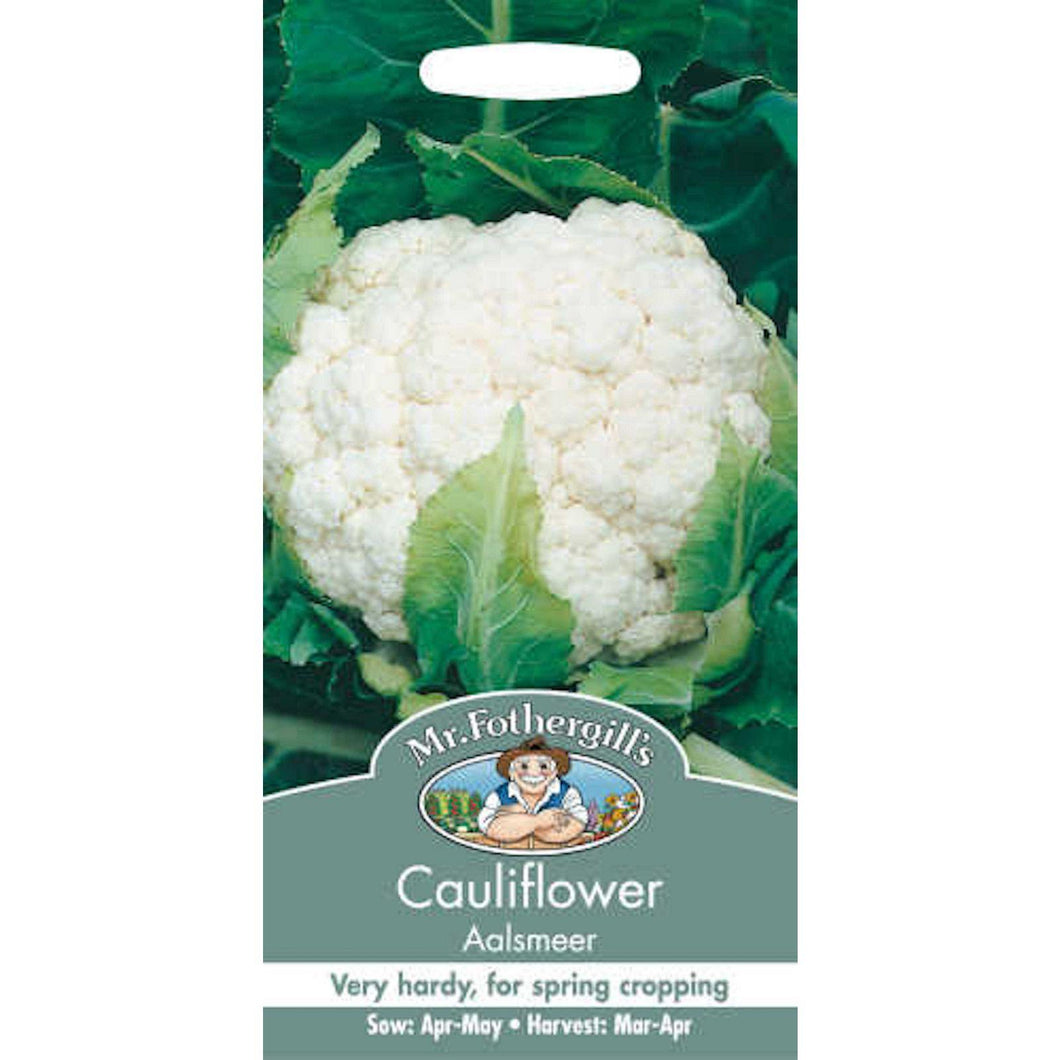 Cauliflower Aalsmeer Seeds- By Mr Fothergills