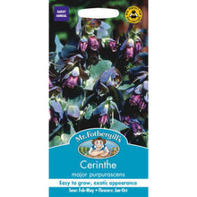 Load image into Gallery viewer, Cerinthe Major Purpurascens Seeds- By Mr Fothergills