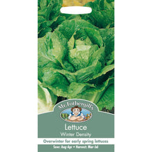 Load image into Gallery viewer, Lettuce Winter Density Seeds- By Mr Fothergills - Bells Gardening