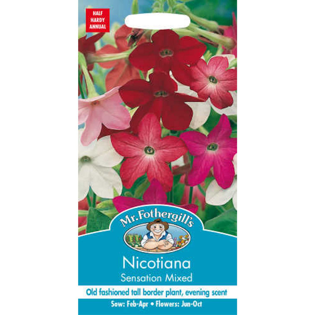 Nicotiana Sensation Mixed seed- By Mr Fothergills